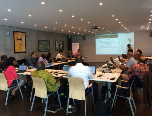 First User Workshop of GlobWetland Africa