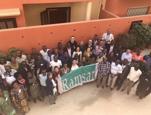 GlobWetland Africa at the Ramsar African Regional Preparatory Meeting in Dakar, Senegal